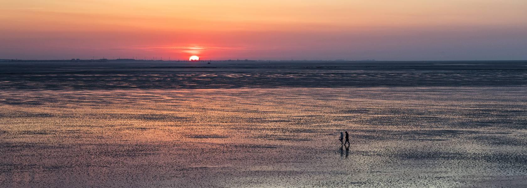 Weltnaturerbe Wattenmeer, © Florian Trykowski