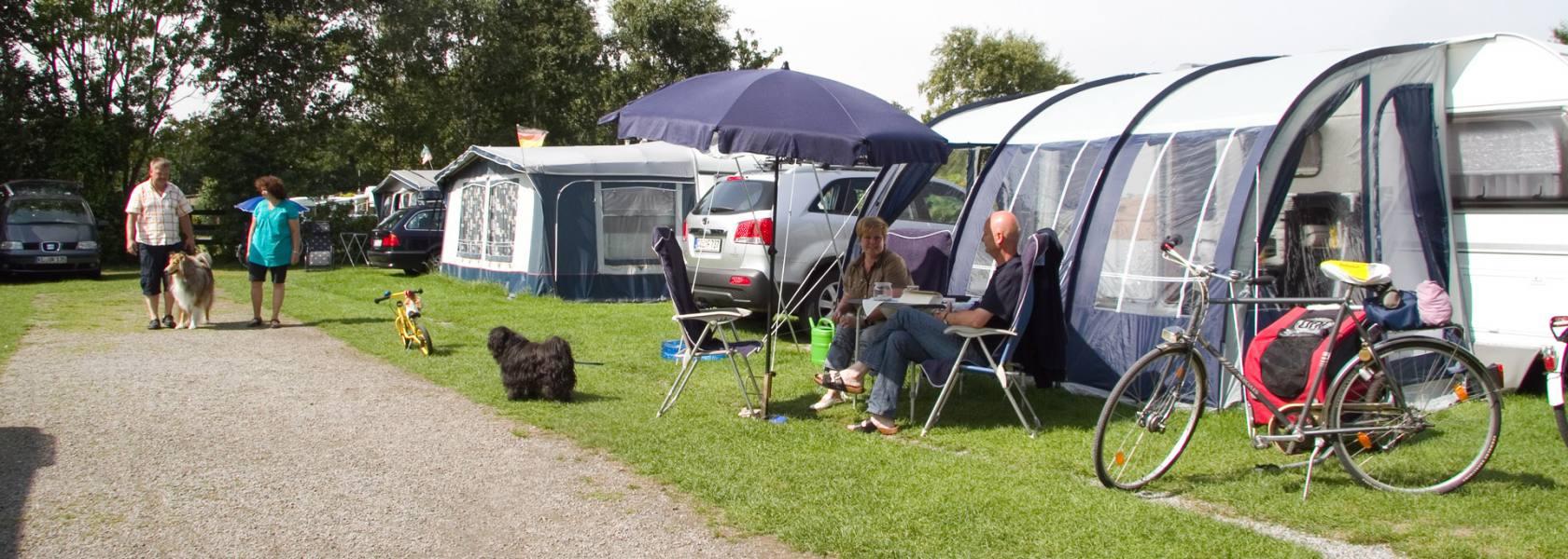 Camping mit Hund, © Nordsee-Camp Norddeich GmbH