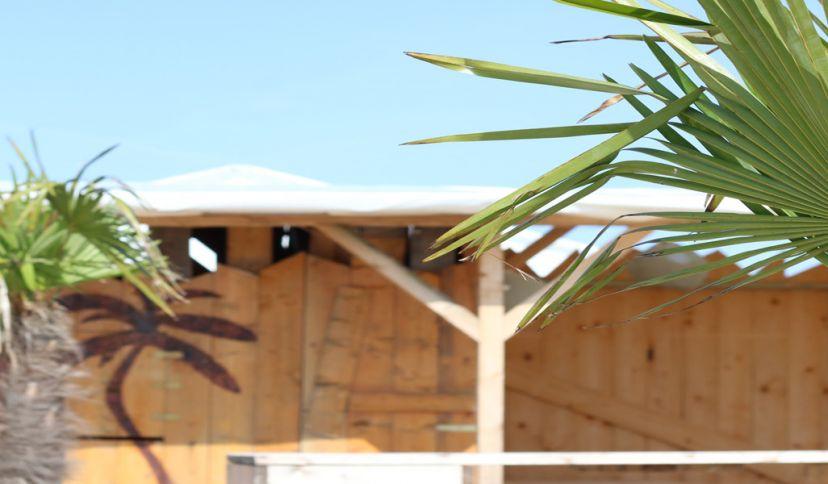 Strandbar mit Palmen, © Die Nordsee GmbH, Viktoria Thaden