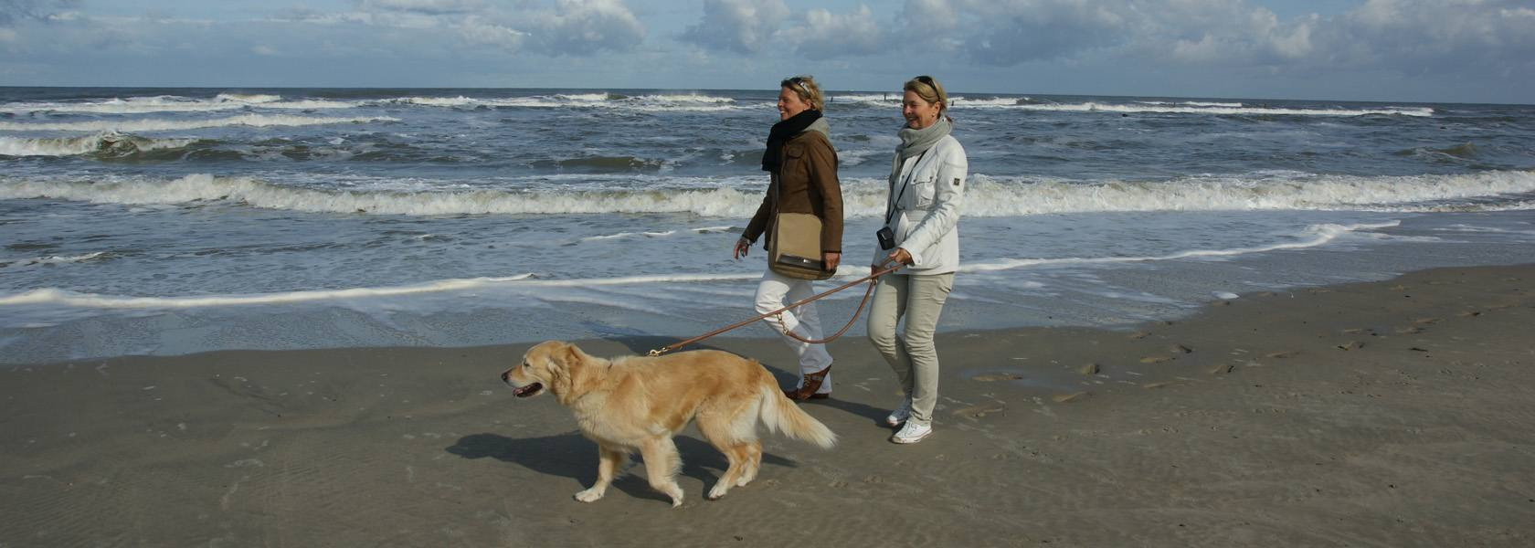 Spaziergang mit Hund, © Dirk Topel