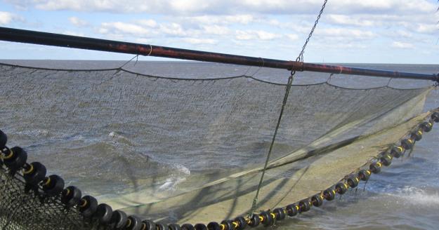 Fischernetz, © Die Nordsee GmbH, Jantje Olchers