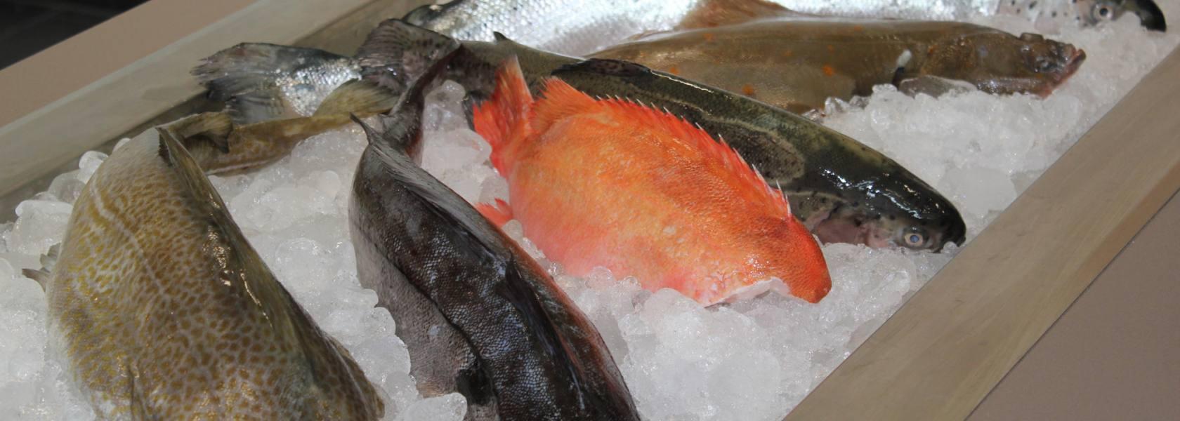 Frischer Fisch, © Die Nordsee GmbH, Katja Benke