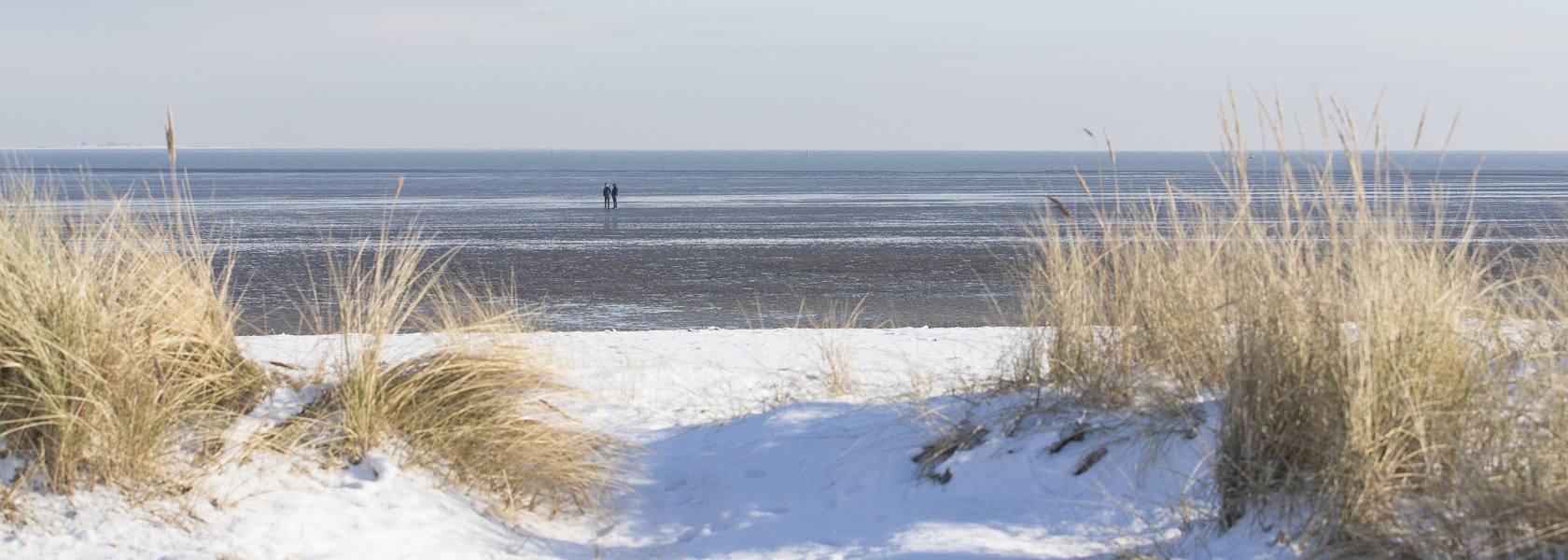 Winterwatt in Schillg, © Wangerland Touristik GmbH