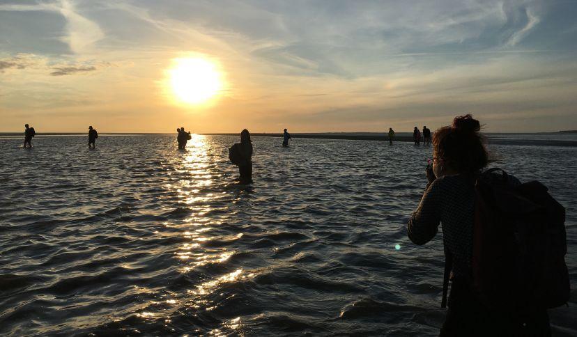 Wattwandern: Die Priele des Wattenmeers sind Lebensraum für Nordseegarnelen und verschiedene Fischarten., © Die Nordsee GmbH
