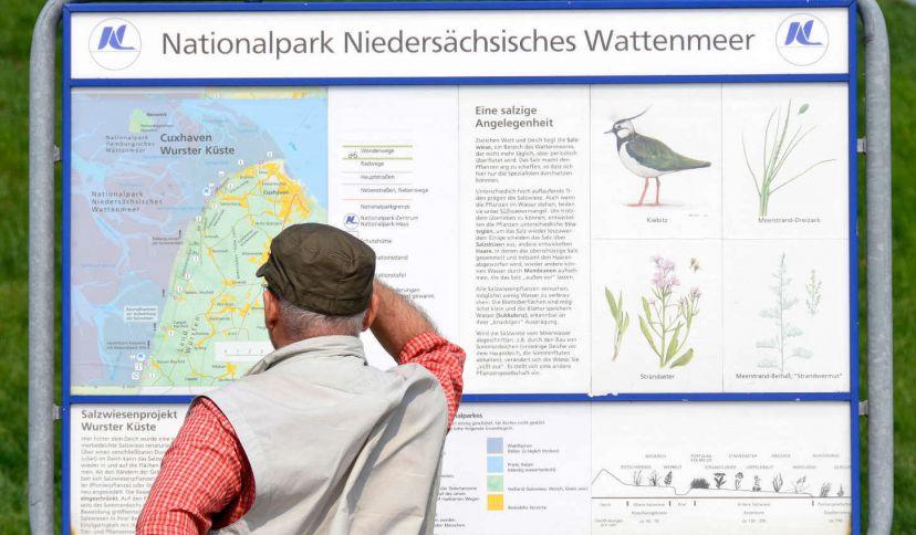 Informationstafel zum Niedersächsischen Wattenmeer an der Küste der Nordsee in Cappel, © Beate Ulich