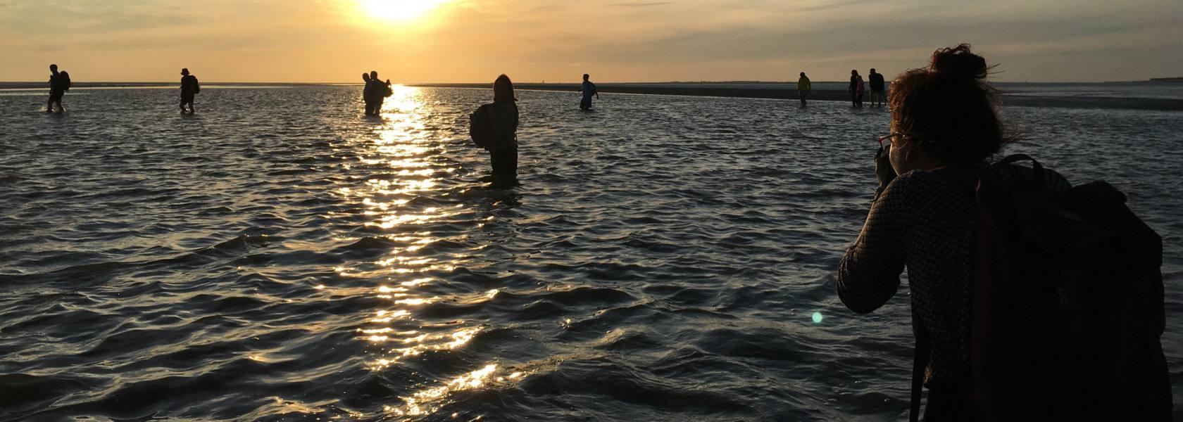 Wattwandern im Sonnenuntergang, © Die Nordsee GmbH, Katja Benke