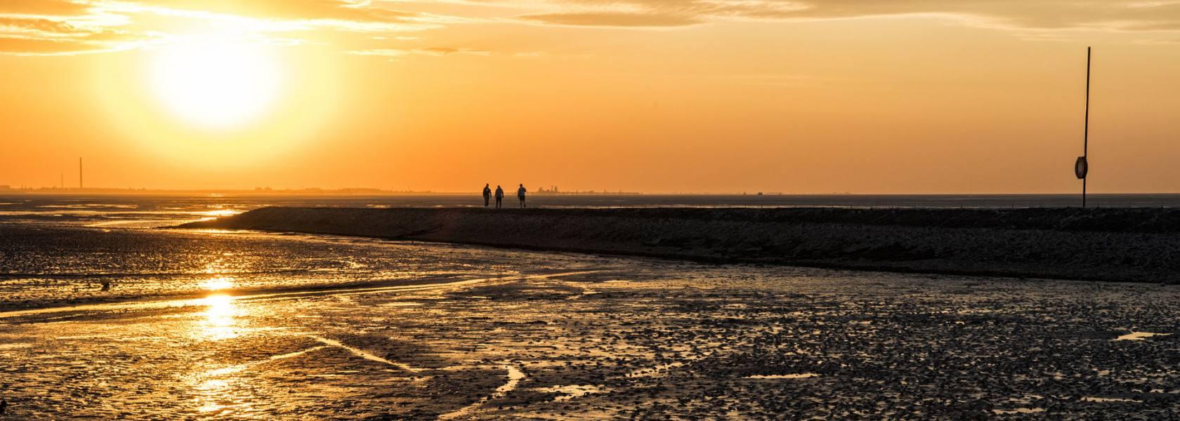 Sonnenuntergang im Wattenmeer, © Florian Trykowski