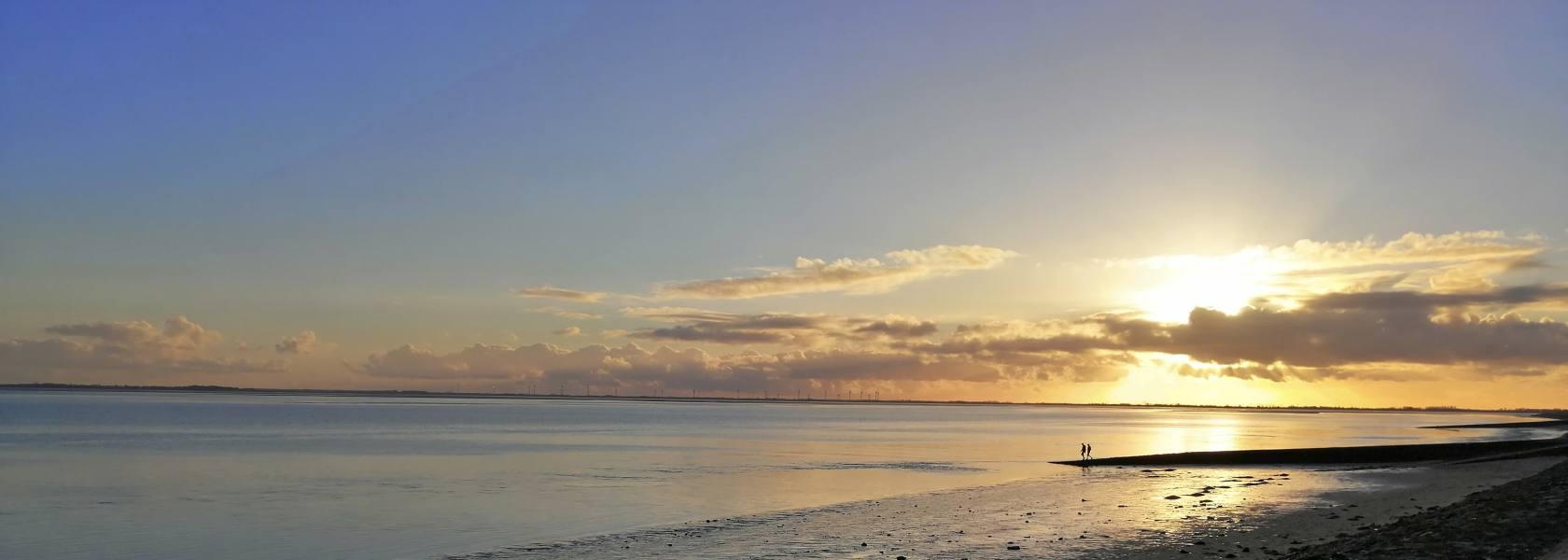 Strandbild Watt